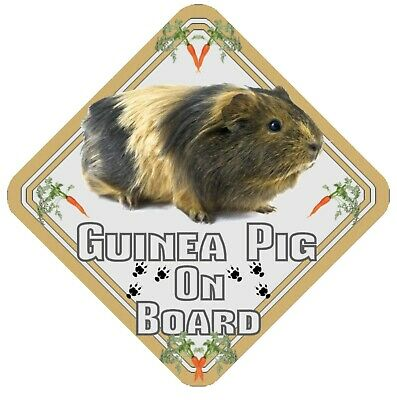 Guinea Pig On Board Car Window Sign  - Pet Animal Safety