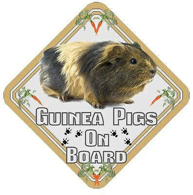 Guinea Pigs On Board Car Window Sign  - Pet Animal Safety