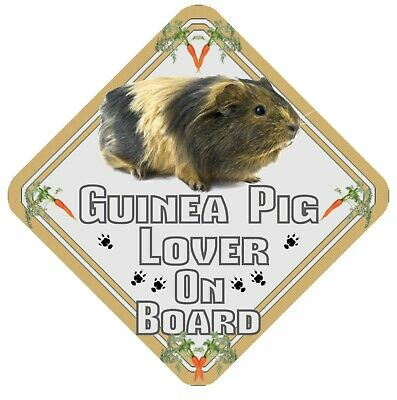 Guinea Pig Lover On Board Car Window Sign  - Pet Animal Safety