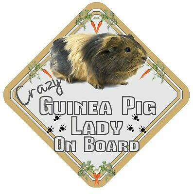 Crazy Guinea Pig Lady On Board Car Window Sign  - Pet Animal Safety