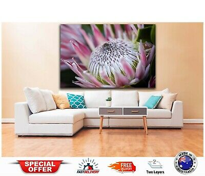 BEAUTIFUL FLOWERS ART  -Australian made framed Stretched wall Canvas