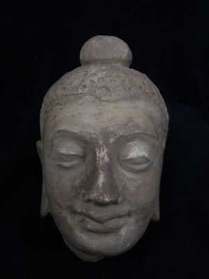 Ancient Stucco Large Size Buddha Head Gandhara/Gandharan 200 AD  #STC635