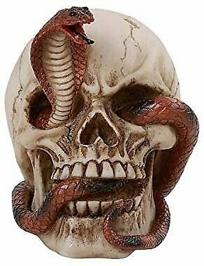 Pacific Giftware Snake Cobra Skull Home Tabletop Decorative Resin Small...