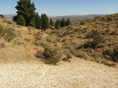 40 Acre Nevada Industrial GOLD Placer for Sale - ($7500 OBO)