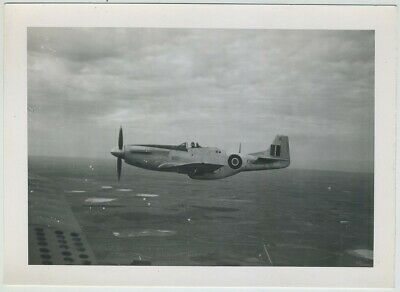 Aviation. Avion. Mustang P.51.. Tirage argentique, silver print.