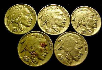 1935 + 1 36-D Buffalo Nickel 5 Cents 5c  ~ LOT OF FIVE (5) NICE COINS ~  70CO