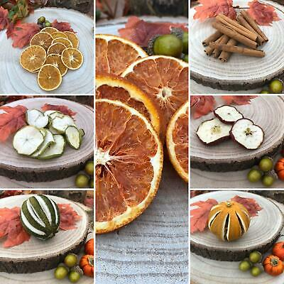 Autumn Fall Florist Wreath Decorations Cinnamon Dried Orange Apple Fruit Slices