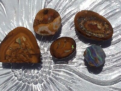 Semi-Rough Natural Australian Opal Freeform Mixed Stones LOT