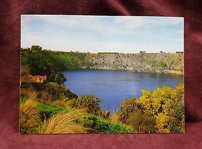 Rose Photo Postcard Of Blue Lake Mt Gambier Sa Australia 2