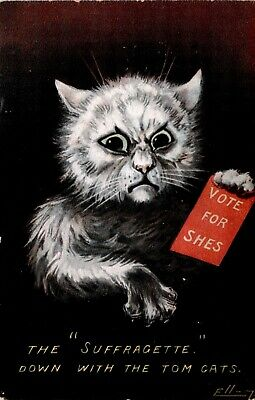 Suffragette~Down With Tom Cats~Vote for Shes~ Artist signed Ellam, c1914 Scarce