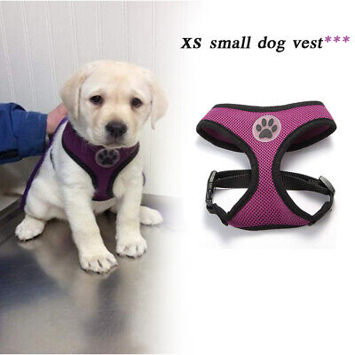 Pet Control Small Dog Harness Soft Mesh Walk Collar Safety Strap Vest XS 4 Color