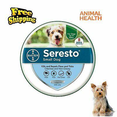 Bayer Seresto Flea and Tick Collar for Small Dog under 18lbs 8 Month Protection