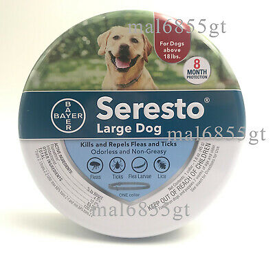 Bayer Seresto Flea and Tick Collar for Large Dog,8 Months Continuous Protection