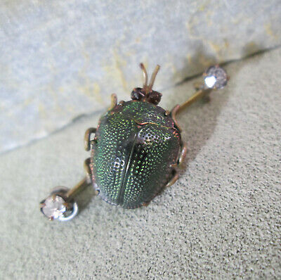 Victorian Scarab Brooch  Egyptian Naturalist Beetle Carapace Garnets and Glass