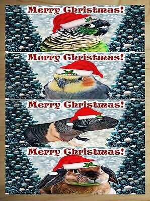 Christmas Vinyl Stickers Decal Animals with Santa Hats