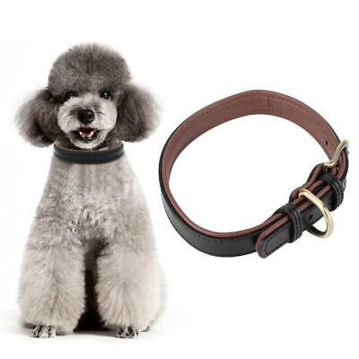 Small Dog Leather Collar Sewn High Quality Metal Buckle Durable Puppy XS - L