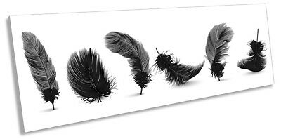 Feathers Minimalistic Print PANORAMA CANVAS WALL ART Picture Black & White