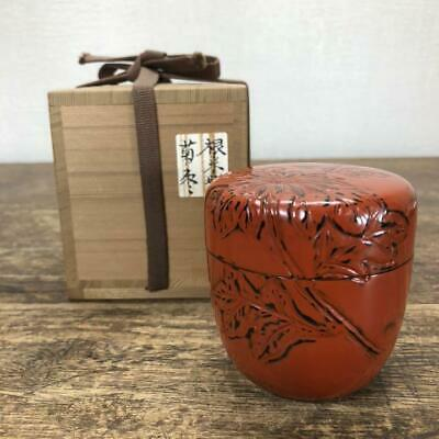 Tea Caddy Ceremony Natsume Sado Japanese Traditional Craft t404