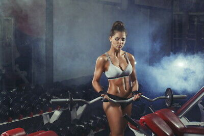 """538 GYM - Body Building Keep Fit Muscle Exercise Work Out 21""""x14"""" Poster"""