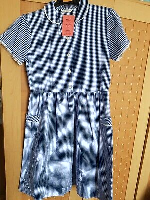 Marks & Spencer Girls School Pure Cotton Gingham Dress Blue 11-12 Years Plus Fit