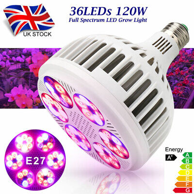 38LED Grow Light E27 Light Lamp Bulb For Plant Veg Hydroponic Full Spectrum EH