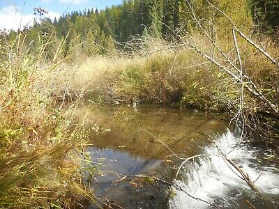 IDAHO / WASHINGTON placer gold mining claim SPOKANE Moscow LEWISTON Pullman
