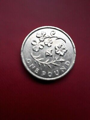 2014 £1 One Pound Coin Floral Emblems - Ireland The Flax and Shamrock