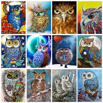 DIY Paint By Number Kit Digital Oil Painting Wall Home Decor Owl Animal 40*50cm