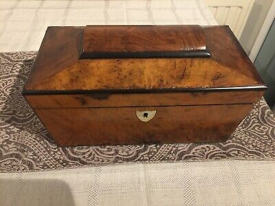 Antique Pretty Tea Caddy (BurrWalnut) Sarcophagus Shape