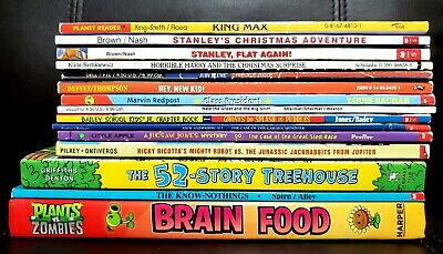 Lot of 10 Children's Chapter Books 1st grade BOYS Flat Stanley Horrible Harry