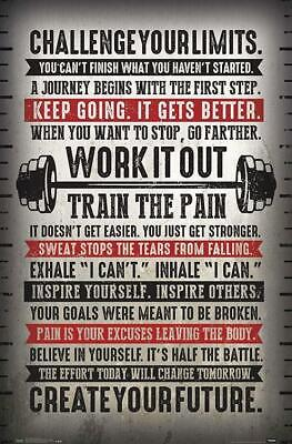 "*BRAND NEW* CHALLENGE YOUR LIMITS TRENDS POSTER 22.375""x34"""