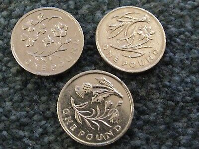 Old £1 Coins Floral Collection