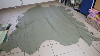 Leather Hide Mud - Green Approx. 5,73 Qm (F98)