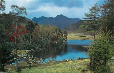 Picture Postcard: English Lake District, Blea Tarn And Langdale Pikes