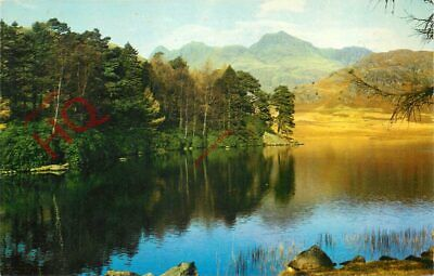 Picture Postcard_ English Lake District, Blea Tarn And Langdale Pikes