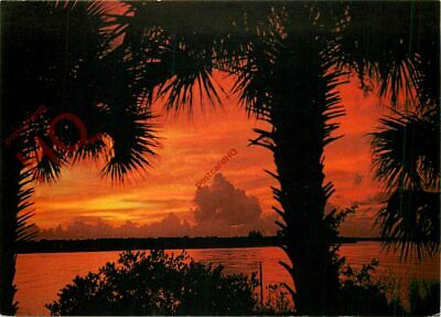 Picture Postcard; Florida, Indian River, New Smyrna Beach