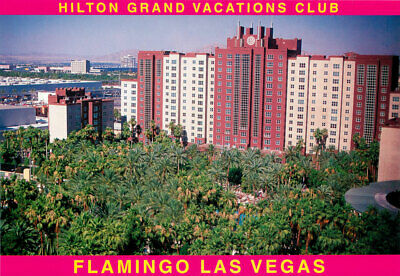 Picture Postcard~ Las Vegas, Hilton Grand Vacations Club