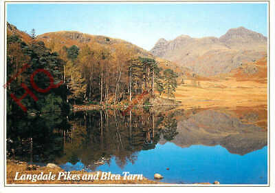 Picture Postcard__English Lake District, Langdale Pikes And Blea Tarn