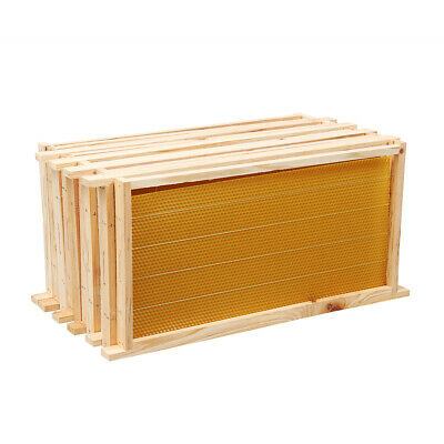 20Pcs Bees Wax Foundation Sheets Wood Beekeeping Pine Beehive Frame 49X23CM AU