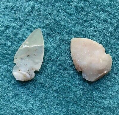 Translucent Tang Arrowheads Native American Artifacts Cherokee Indians