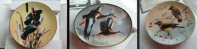 3 x Birds Collectors Limited Edition Plates