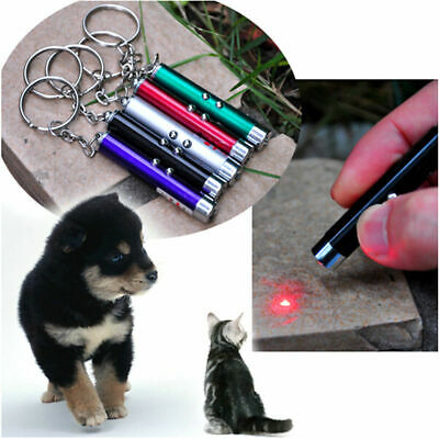 2 in 1 LASER / LAZER POINTER PEN + LED TORCH PET DOG TOY BRAND NEW PP