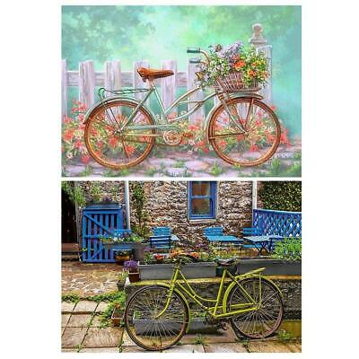5D DIY Full Drill Diamond Painting Bicycle Cross Stitch Embroidery Crafts BF#
