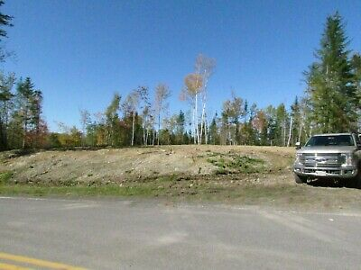***Own 218+/- Acres +/- Of Land In Northern Maine Next To The Canadian Border***