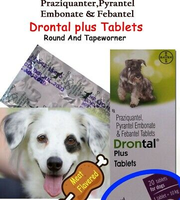 10 Tablets-Drontal Dog Plus Flavour - Round/Hookworm/Tapewormer Bayer Product