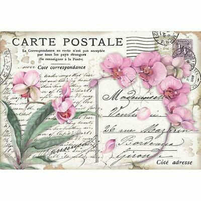 DFS415 Pink Orchid Stamperia Rice Paper 48x33cm Decoupage Mixed media
