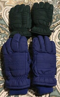 Mens Thinsulate Gloves 2 Pair Size Large Blue Green