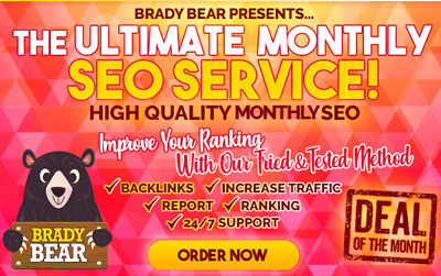 Create High Quality Backlinks, Monthly SEO Service- Premium Package