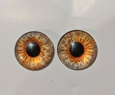 20mm amber / coffee glass eyes 1 pair for needle felting/toy making taxidermy