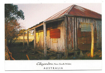 POSTCARD Gilgandra New South Wales c.1990's  old wood & tin home